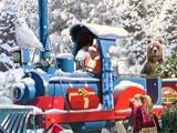 Tree Shopping in Christmas Wonderland 5