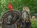 Graveyard Hidden Object Game Midsomer Murders