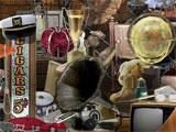 Hidden Relics: Hidden Object Adventure