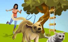 Valea animalelor de companie