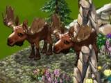 Play Zoo World