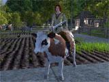 Wurm Online Livestock