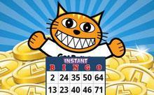 Juegos de bingo y tragamonedas