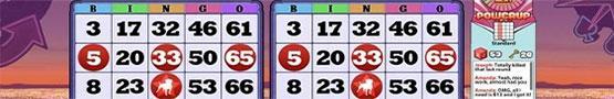 Slots & Bingo Games - 5 Amazing Bingo Games