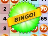 Winning Bingo in Bingo Infinite