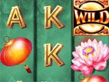 Double Money Slots trying to win big