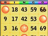 Bingo Cards on Bingo Beach