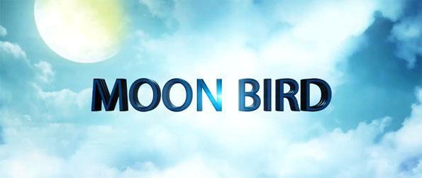 Moon Bird - Experience the sensation of flight by flying as a super bird in Moon Bird VR!