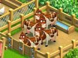 Funky Bay: Farm Animals