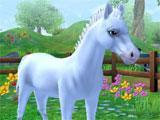 Star Stable Horses: Choosing a foal