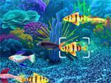 Fish Tycoon 2 beautiful fish