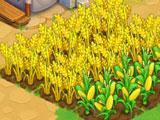 Tidal Town: Farm
