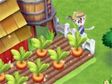 Kitty City growing crops