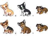 Pet Adoptables breeding section