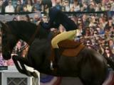 Race in My Horse