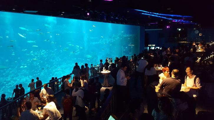 Party by the aquarium