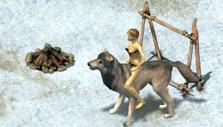 Wolf mount in Wild Terra