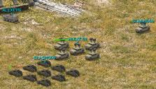 River Combat: Coordinate with allies