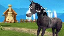 Farm in the background in Horse Paradise