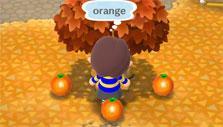 Animal Crossing: Pocket Camp: Gameplay