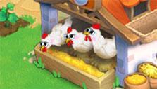 Tidal Town: Raising chickens for eggs