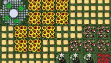 Sunflowers in Molehill Empire