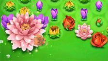 Blossom Blast Saga: pink bloom