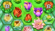 Blossom Blast Saga: big buds