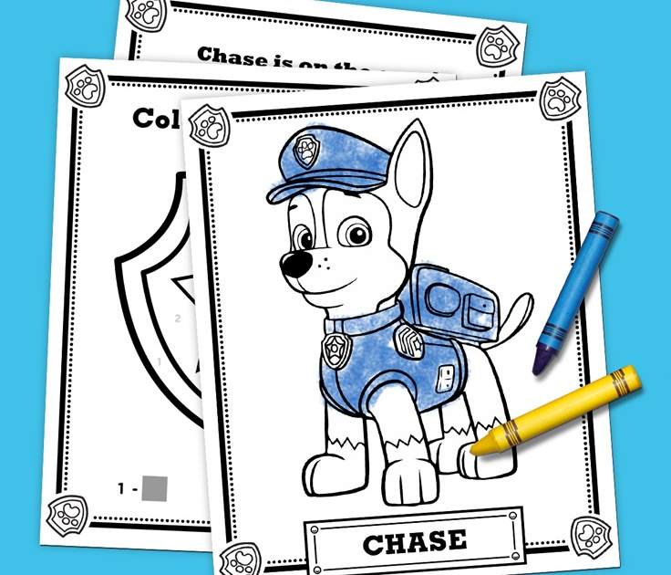 Chase Is on the Case Activity Pack