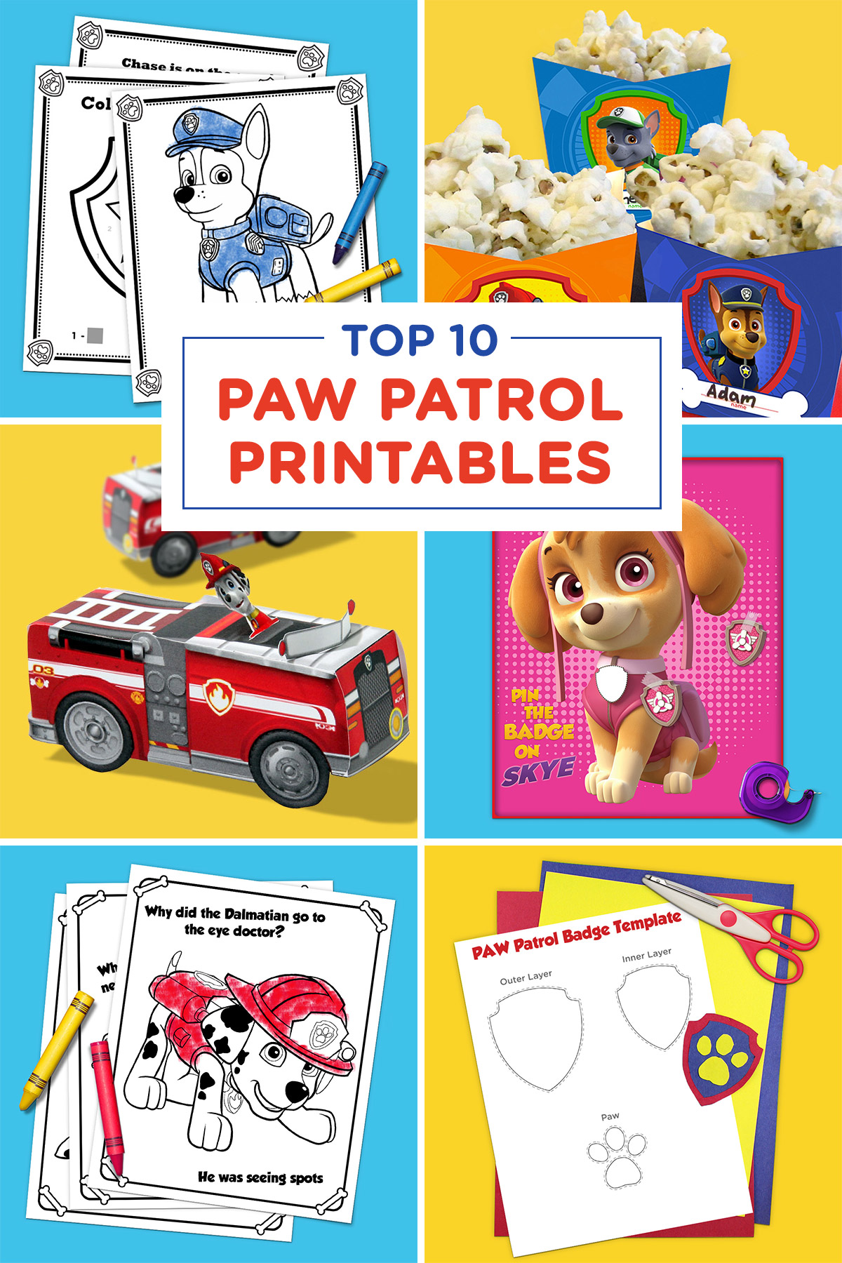 Matching Items in My Shop PAW PATROL Birthday Party Game Give Chase His Badge