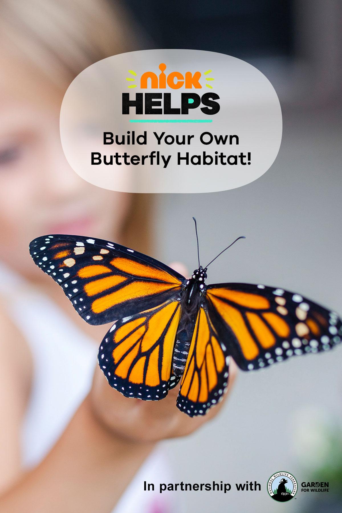 Make a Butterfly Habitat