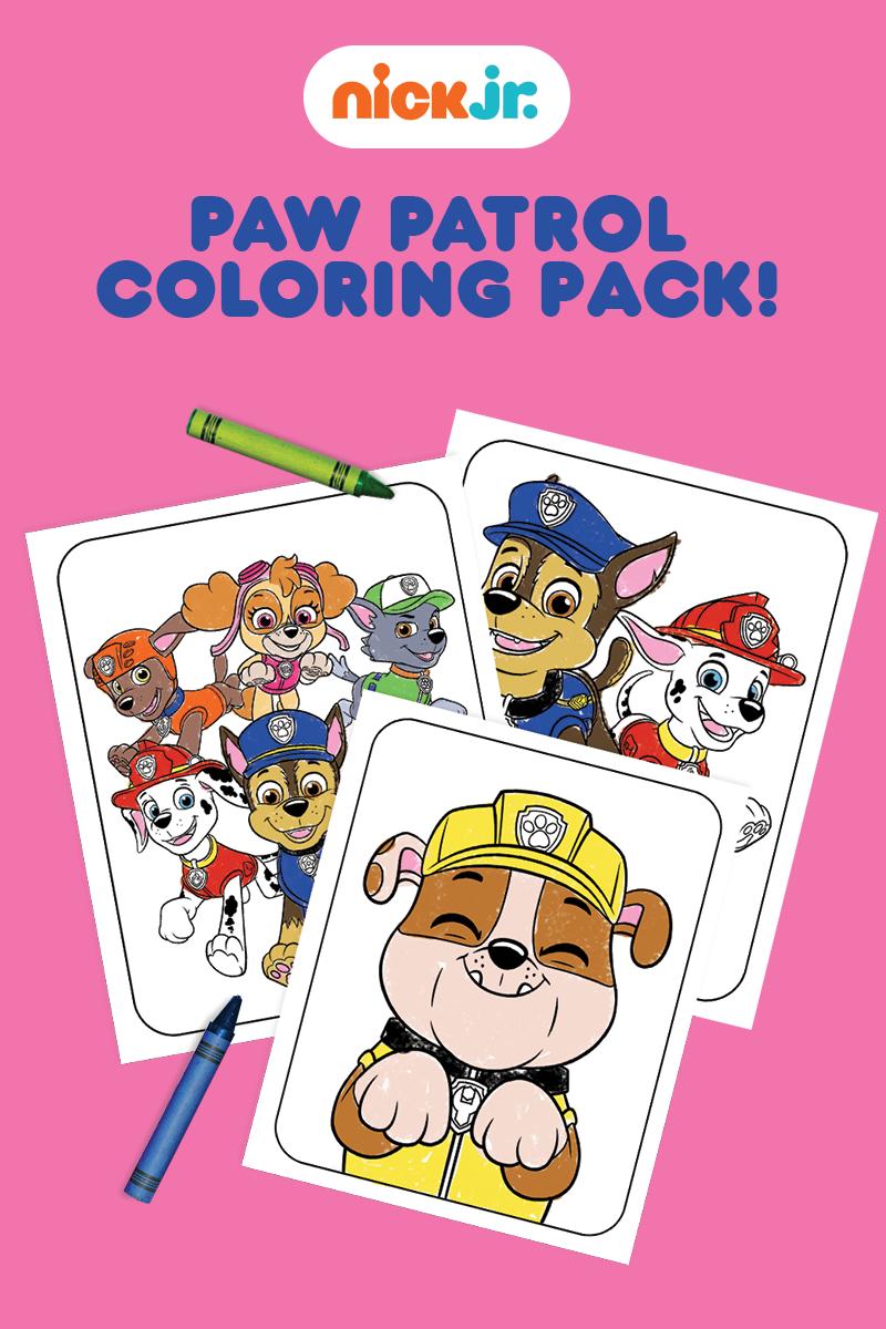 Paw Patrol Coloring Pack