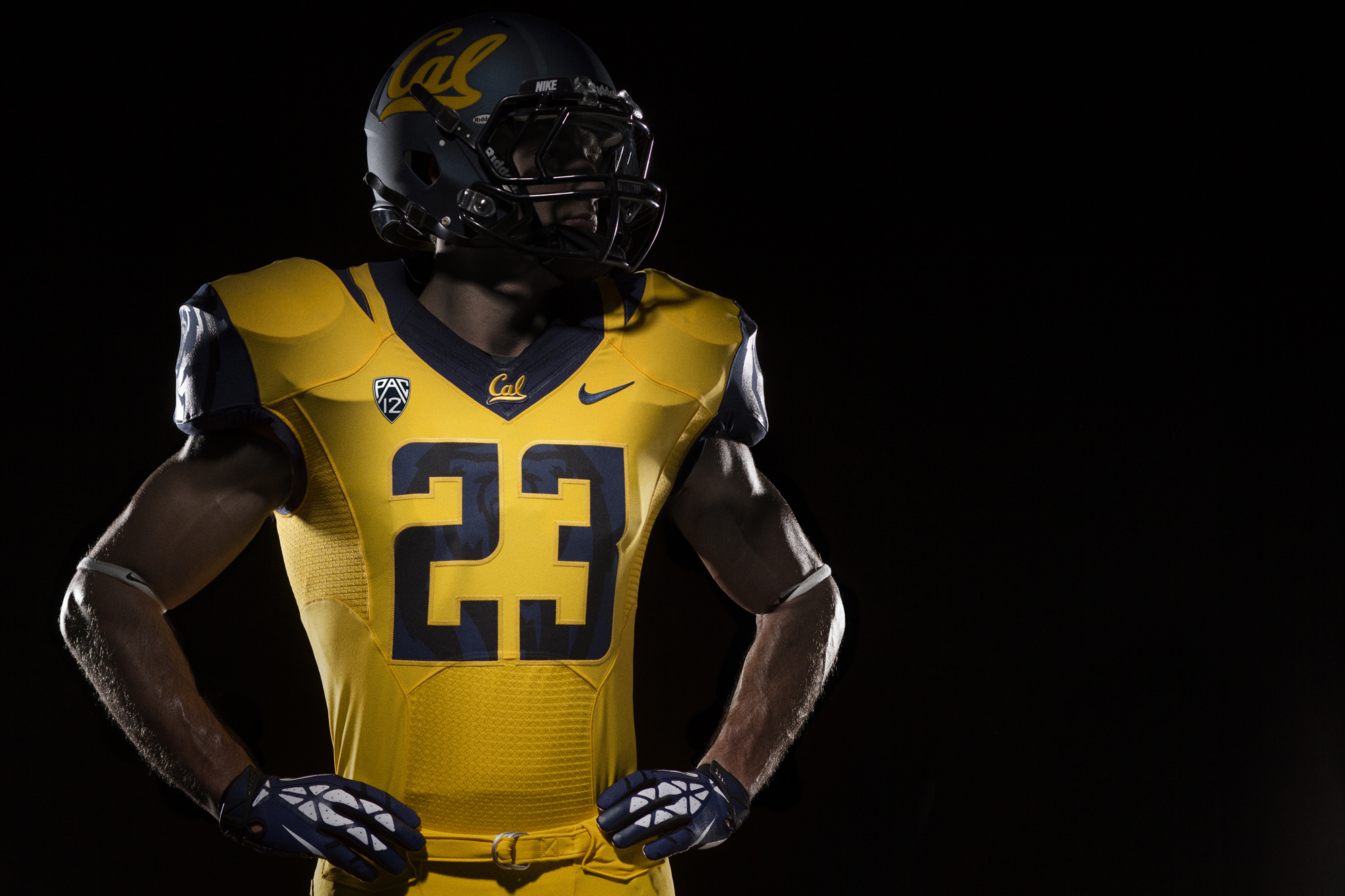 Cal Athletics Unveils Updated Brand Identity for Golden ...