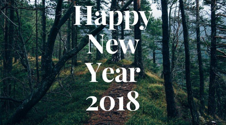 happy new year 2018 (7)