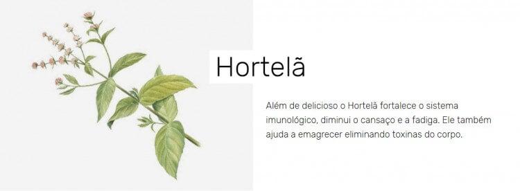 hosrtela