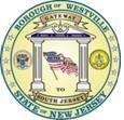 Borough of Westville OEM