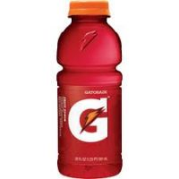 Gatorade Fruit Punch 20 OZ - 24/PK