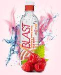 Vblast-Wild Berry 16.9 oz-12/Pack