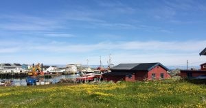An Unexpected Tour of Finnmark: Berlevåg