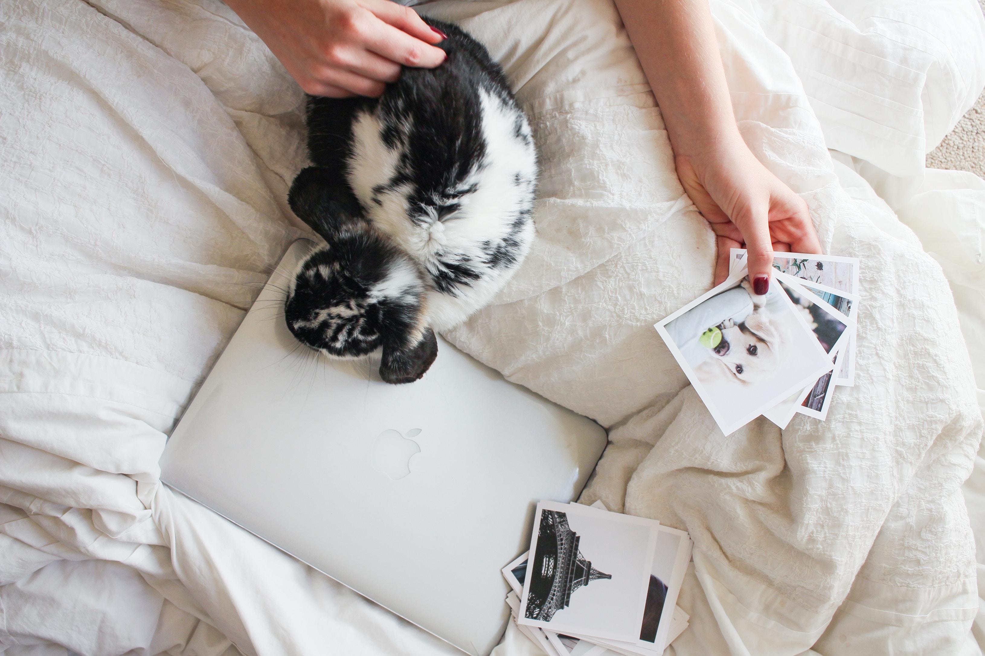 Photo Prints and Computer