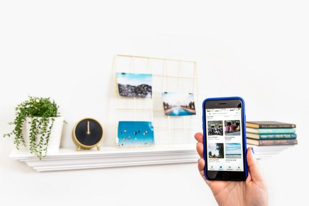 Photos organized in a folder on a phone