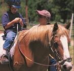 horseback home