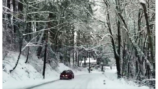 Looking back: A year after Portland's historic snowfall