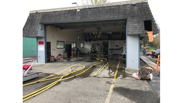 Blossoming tree starts fire at Damascus fire station