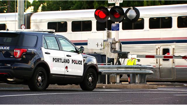 Man struck by freight train, then Amtrak train