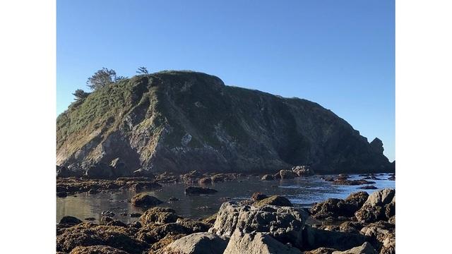 Man dies after falling 50 feet off rock, into ocean