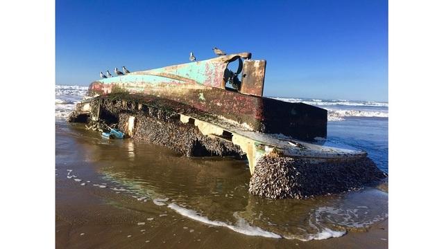 Boat from 2011 tsunami washes up on Oregon Coast