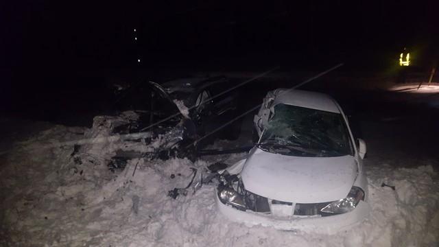 12-year-old Lake Oswego girl, mom killed in crash