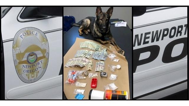 Newport K9 encuentra heroína, metanfetaminas, champiñones, dinero en efectivo