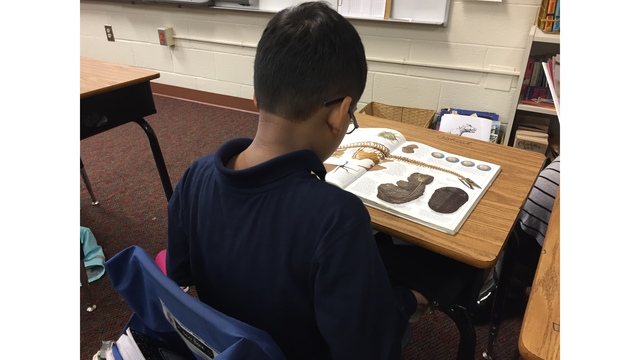 Bill Would Require Uniforms for All SC Public School Students